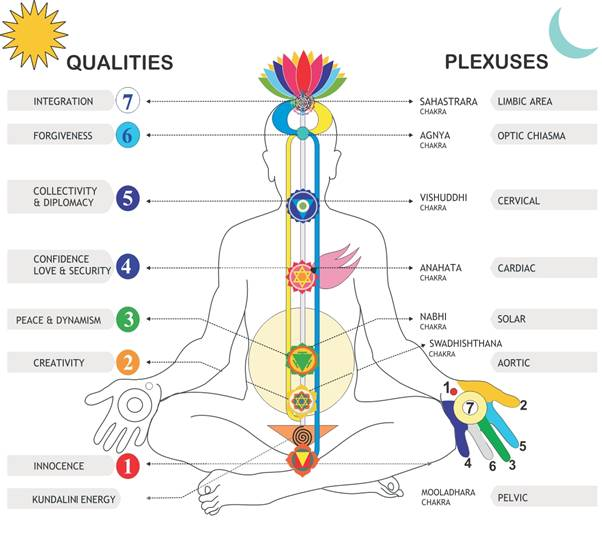 the-seven-chakras-wikimedia-commons